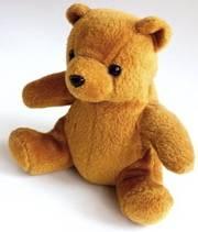 Teddy Bears Picnic Party